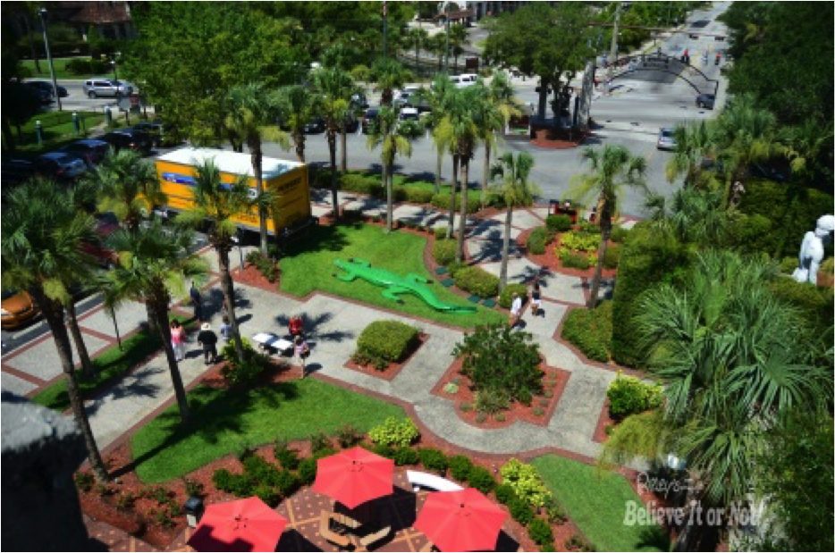 New Ripleys St Augustine Alligator 2015